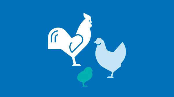 Food-Chain-Enterprises-Icons-10